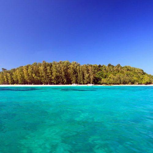 ピピ島&バンブー島(日本語ガイド / お写真無料サービス)