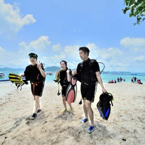 コーラル島+体験ダイビング