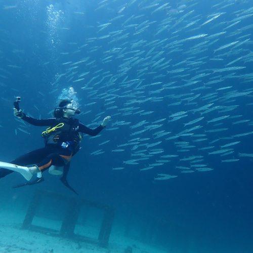 ラチャヤイ島体験ダイビング+アクティビティ