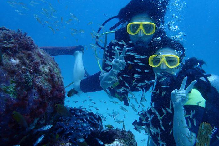 ラチャヤイ島体験ダイビング+象乗り30分
