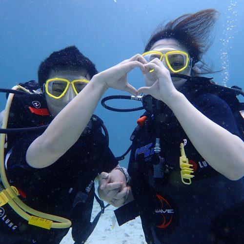ラチャヤイ島体験ダイビング+タイガーパーク