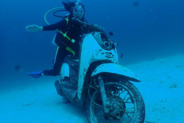 ラチャノイ島&ラチャヤイ島体験ダイビング