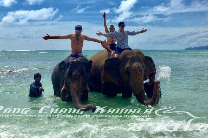 プーケット象乗り&象と水浴び