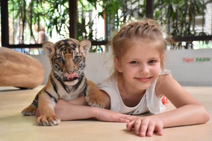コーラル島1日+タイガーパーク
