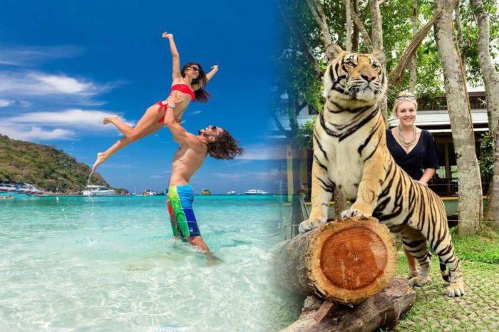 コーラル 島 ツアー+タイガーパーク プーケット