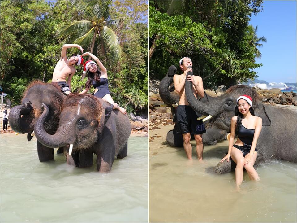 象と水浴び体験