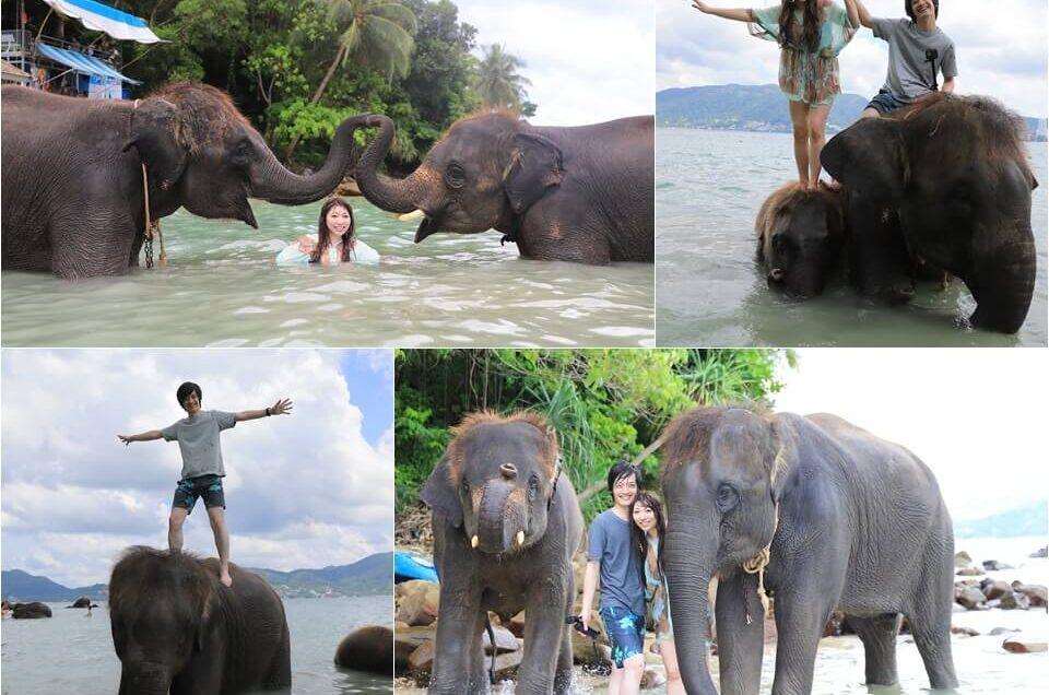 プーケットのビーチで仲良く象乗り体験!エレファントスイム!