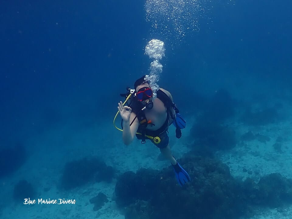 プーケット ダイビング ラチャ島